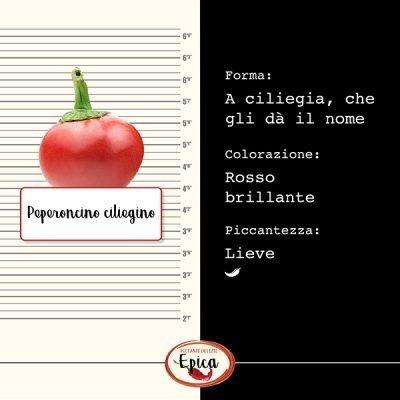 Peperoncino ciliegino identikit