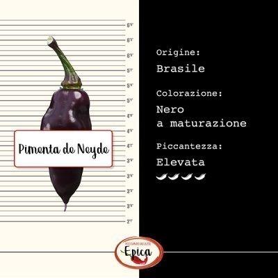 Pimenta de Neyde identikit